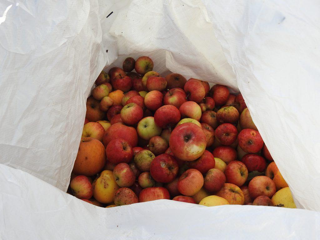 Bigbags mit leckeren Äpfeln