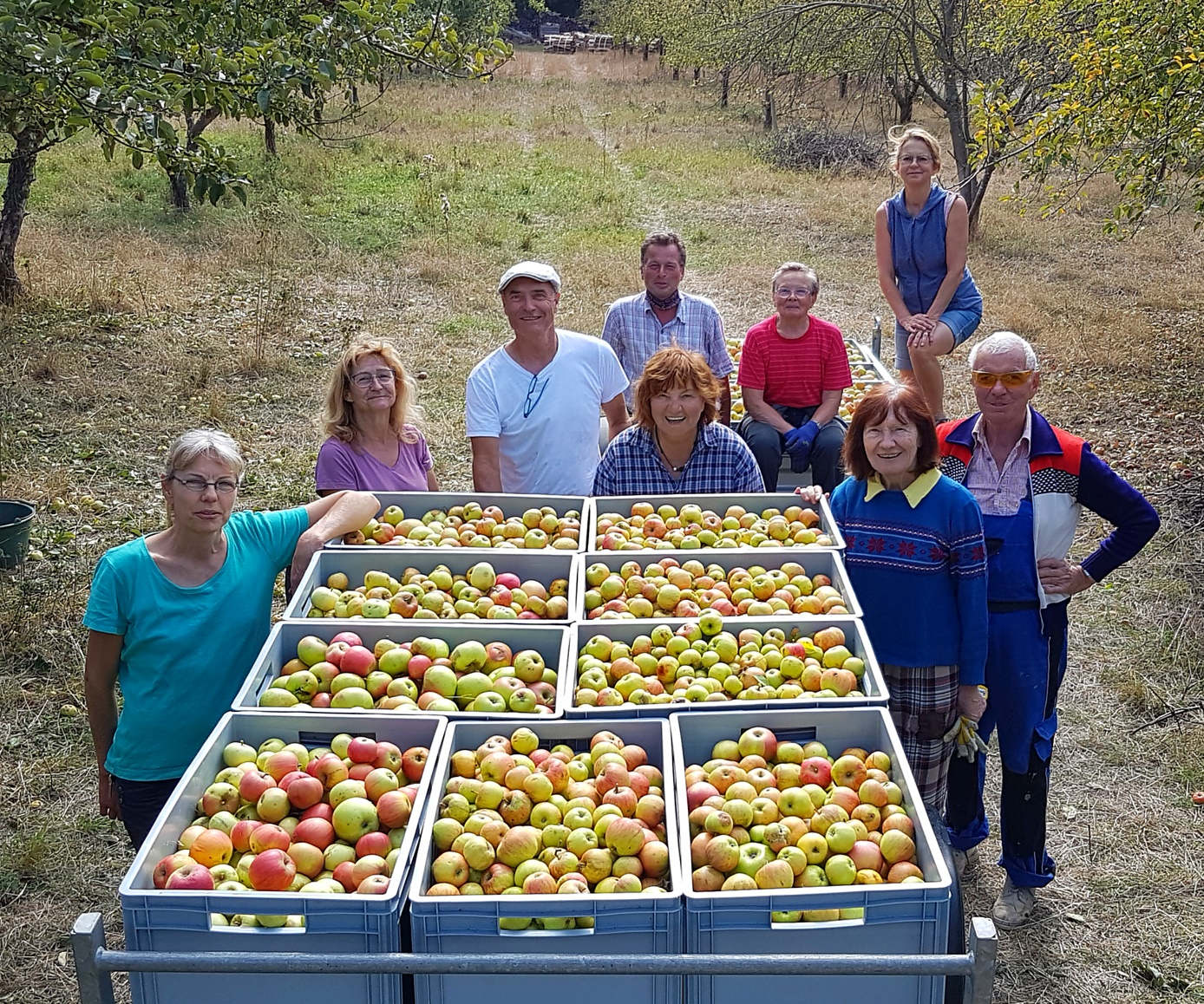 Apfelernte 2020